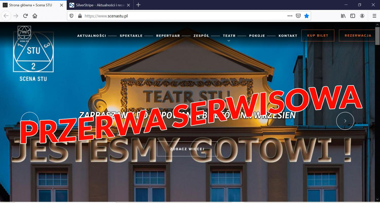 Przerwa w dostępie do serwisu internetowego