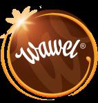 Wawel LogoKolo1