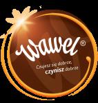 Wawel LogoKolo3